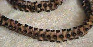 Replica of Dinizulu's necklace